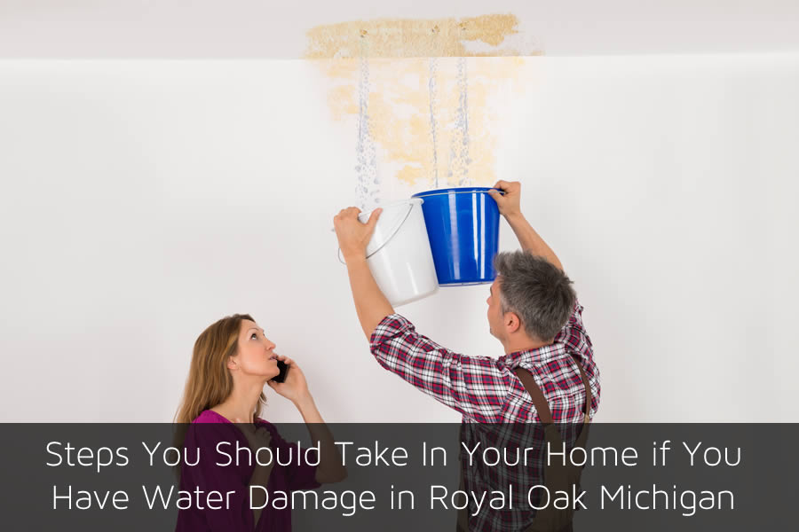 Steps You Should Take In Your Home if You Have Water Damage in Royal Oak Michigan