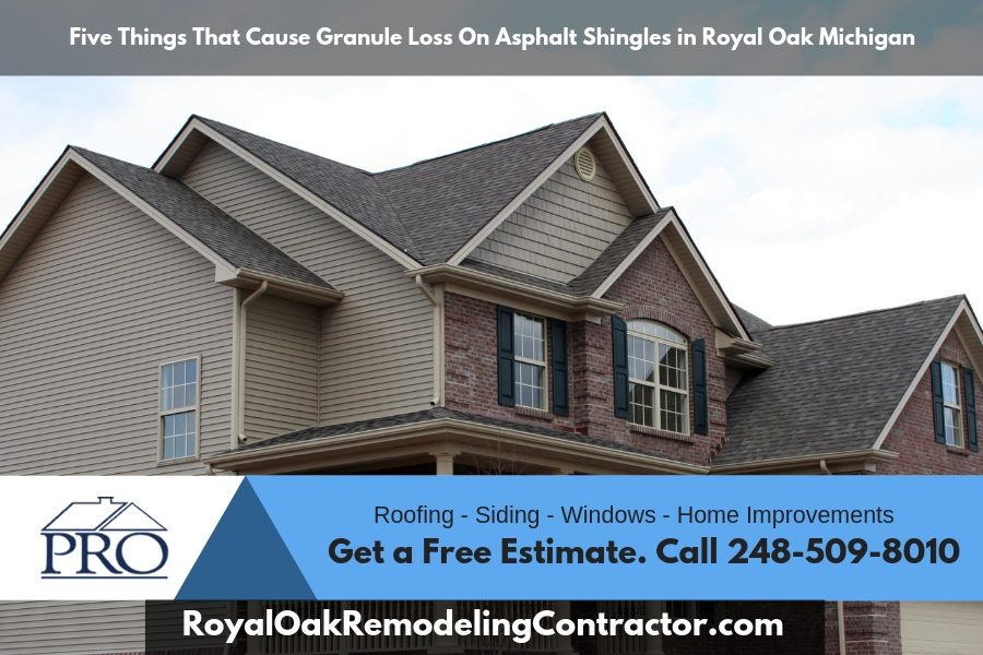 Five Things That Cause Granule Loss On Asphalt Shingles in Royal Oak Michigan